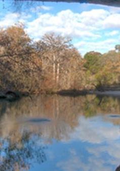 Vẻ đẹp huyền ảo của hồ nước Hamilton