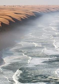 Khung cảnh đẹp như tranh nơi sa mạc Namib giáp biển