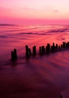 Ngắm hoàng hôn bên bờ biển Landes