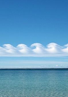 """Kỳ lạ mây """"sóng thần"""" trên vịnh Jervis"""