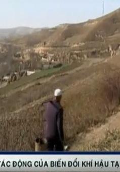 """Biến đổi khí hậu """"làm khổ"""" người dân vùng Tây Bắc Trung Quốc"""