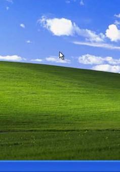 Windows XP sẽ chung số phận với Windows 98