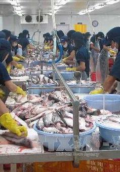 VASEP kiến nghị kiểm soát sản lượng nuôi cá tra