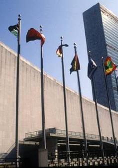 Ưu tiên của Liên hợp quốc trong năm 2014