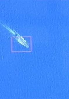 Vệ tinh VNRedsat-1 chụp ảnh vùng nghi vấn máy bay mất tích