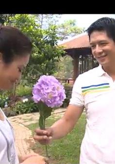 """Cảnh lãng mạn như thung lũng tình yêu Đà Lạt ngay tại Hà Nội trong phim """"Ngoại tình"""""""