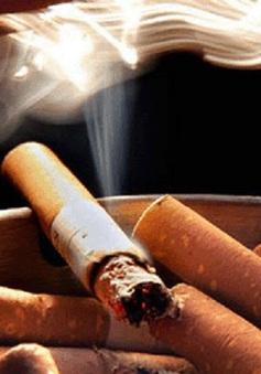 Chile: Cấm triệt để hút thuốc nơi công cộng khép kín