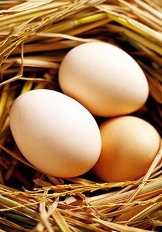 Trứng gà chữa bệnh phụ nữ
