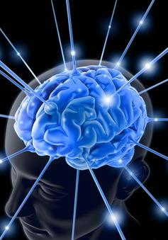 Sống năng động để có trí não lành mạnh