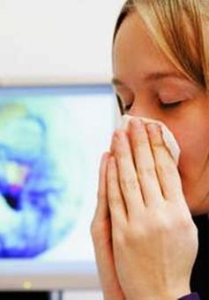 Bài thuốc điều trị viêm xoang hiệu quả