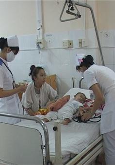 Khánh Hòa: Nan giải công tác phòng chống sốt xuất huyết