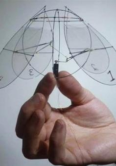 Mỹ thiết kế robot bay mô phỏng loài sứa