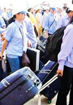 Lao động Việt Nam thiếu thông tin khi làm việc ở nước ngoài