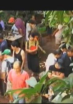 Phiên chợ xưa giữa lòng Hà Nội