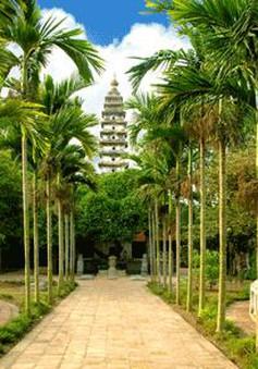 Thông điệp lịch sử từ ngôi chùa tháp Phổ Minh - Nam Định