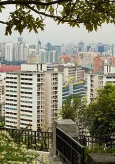 Singapore và chiến lược phủ xanh thành phố