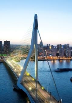 Hấp dẫn Rotterdam