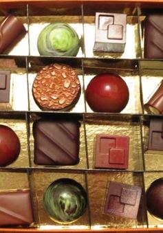 Đến Thụy Sĩ trải nghiệm làm chocolate thủ công