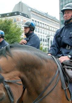 Cảnh sát ngựa tại Vương quốc Bỉ