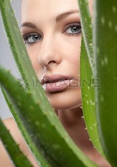 Làm đẹp da bằng thảo dược, Collagen