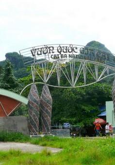 Vườn quốc gia Cát Bà - Một gợi ý cho chuyến du lịch hè