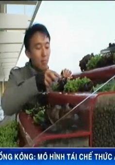 Ý tưởng hay tái chế thức ăn thừa ở Hong Kong (Trung Quốc)