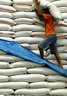 7 tháng đầu năm, Việt Nam xuất khẩu hơn 3,6 triệu tấn gạo