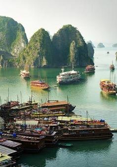 Vụ 7.000 lít dầu chứa hóa chất siêu độc và số phận Vịnh Hạ Long