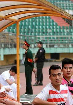 V.Ninh Bình xác nhận bỏ V.League, đá AFC Cup