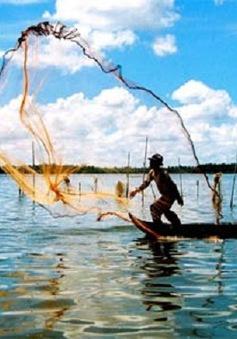 Hôm nay (1/4), ngày truyền thống ngành Thủy sản Việt Nam