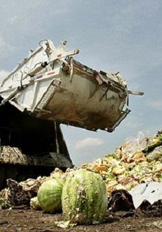 Lãng phí thực phẩm: Nguyên nhân gây ô nhiễm môi trường