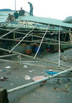 Lốc xoáy tại Bạc Liêu, gần 100 nhà bị sập và tốc mái