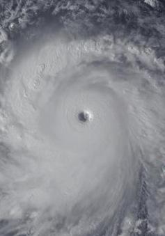 Siêu bão Haiyan đổ bộ Philippines