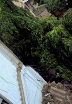 Sập nhà ở Ấn Độ, ít nhất 14 người thiêt mạng