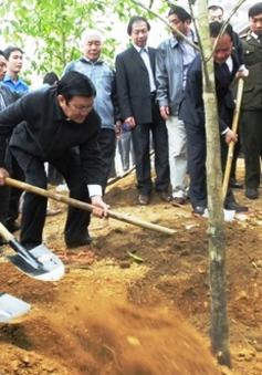 """Chủ tịch nước phát động """"Tết trồng cây"""""""