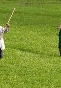 Quảng Nam tìm giải pháp cứu hơn 10.000ha lúa Đông Xuân