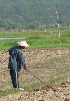 Suy kiệt nguồn nước ảnh hưởng lớn đến sản xuất nông nghiệp