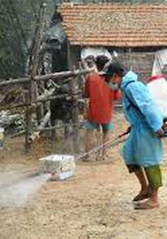 Dịch lở mồm long móng bùng phát ở Hà Tĩnh