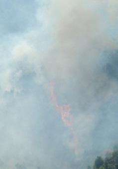 Gần 1.000 người tham gia chữa cháy rừng Bà Nà - Núi Chúa