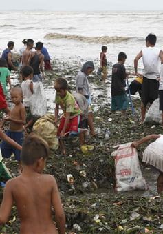 27 người Philippines thiệt mạng vì bão Rammasun