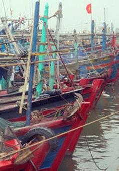 Các địa phương chủ động phòng chống bão Rammasun