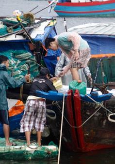 Cấm biển từ Quảng Ninh đến Quảng Bình để đối phó với bão Rammasun
