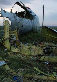 Malaysia quyết tâm điều tra vụ máy bay MH17 rơi tại Ukraine