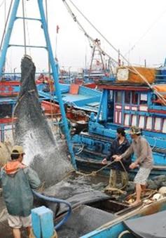 Quảng Bình: Hỗ trợ ngư dân khai thác vùng biển xa