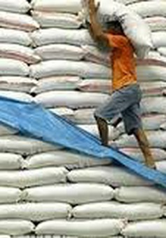 Tăng cường kiểm soát xuất khẩu gạo sang Trung Quốc