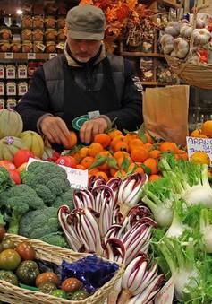 Kinh tế Italy rơi trở lại suy thoái
