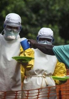 Nigeria: Bệnh nhân nhiễm virus Ebola đầu tiên xuất viện