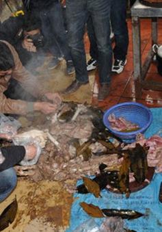 Bắt giữ vụ nấu cao hổ tại Hà Tĩnh