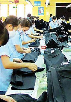 FTA Việt Nam - EU thúc đẩy đầu tư và cải tiến công nghệ