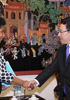 Phó Thủ tướng Phạm Bình Minh tiếp Phó Tổng thư ký LHQ
